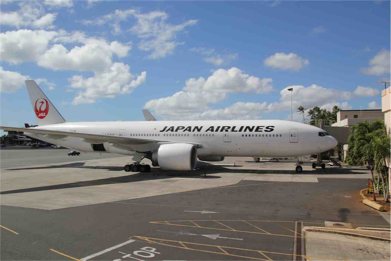 JAL利用なら無料で体験可!JALハワイ線利用者限定特典をチェック
